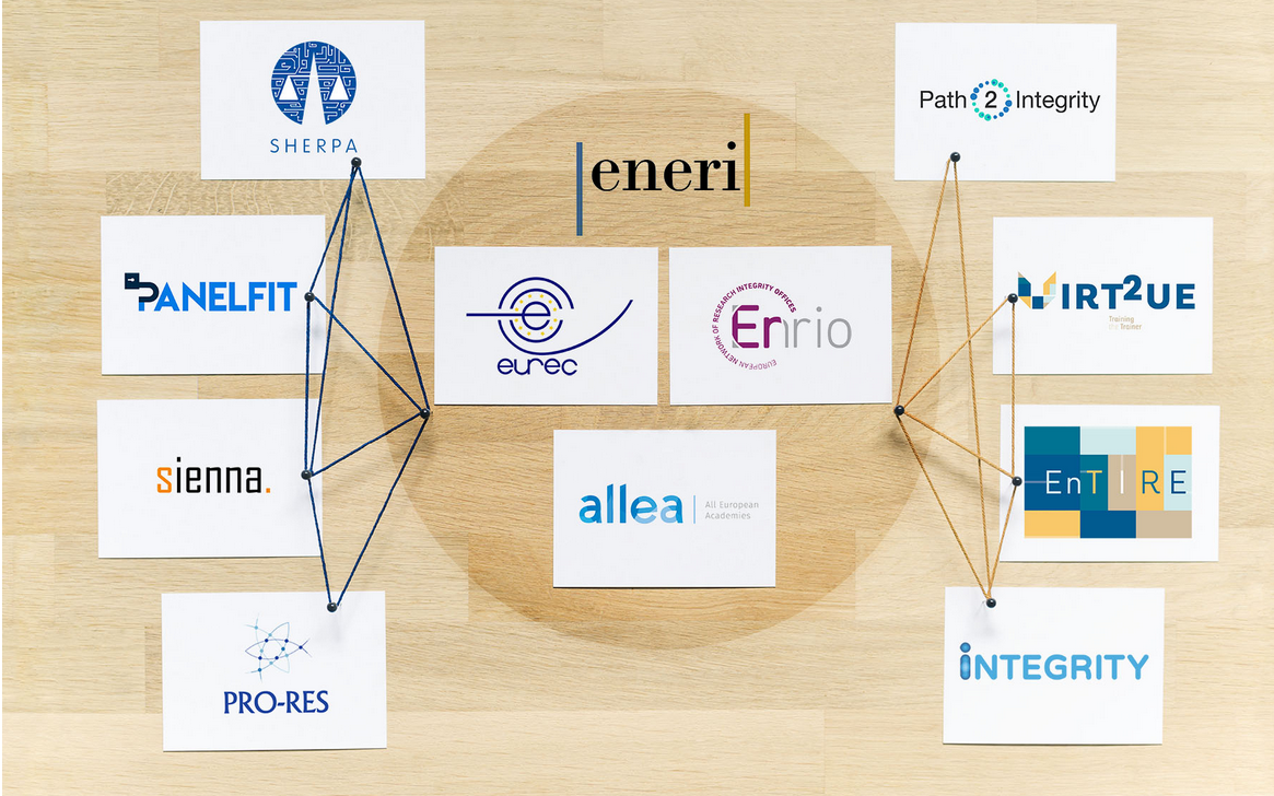 ENERI project networks